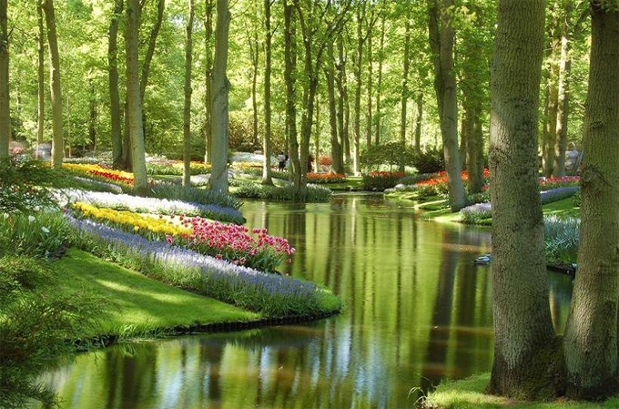 Keukenhof Gardens - Netherlands.