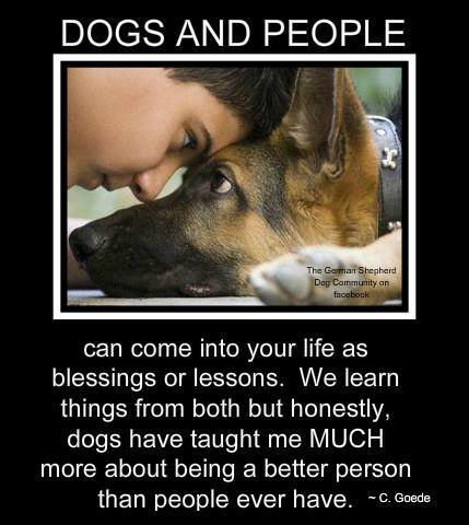 Σκύλος, ο καλύτερος φίλος του ανθρώπου