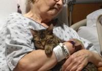 Η πιο γλυκιά αγκαλιά από ζωάκια!