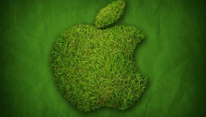 657055_green_apple_1