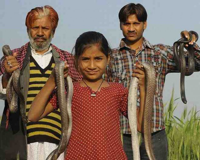 Ινδία: Η 11χρονη που ζει μαζί με φονικές κόμπρες