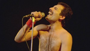Freddie-freddie-mercury