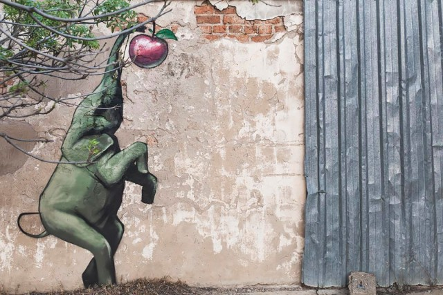 interactive-elephant-street-art-falco-one-south-africa-8
